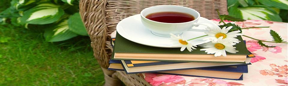spring book2